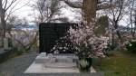 慰霊碑にも選定した桜をダイナミックにお供えしました
