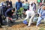 記念植樹 副市長&桜を植える会会長横田さん