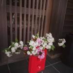 八重桜を活ける